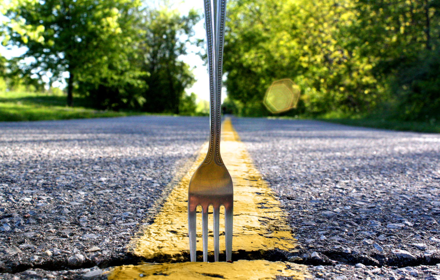 Fork_In_The_Road-1